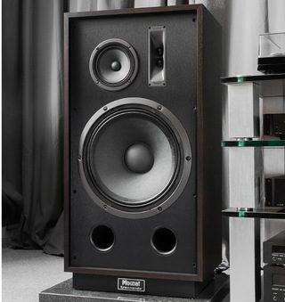 Тест акустики Magnat Transpuls 1500: чтобы вспомнить, для чего создают аудиотехнику
