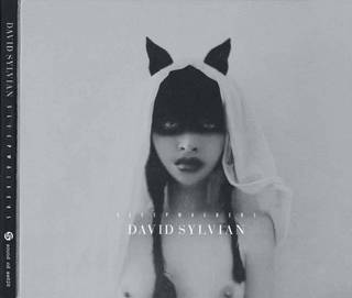 David Sylvian «Sleepwalkers» CD, Samadhi Sound, SS020