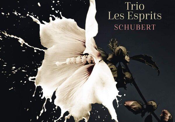 Мартовские гиды: 6 новых альбомов классической музыки