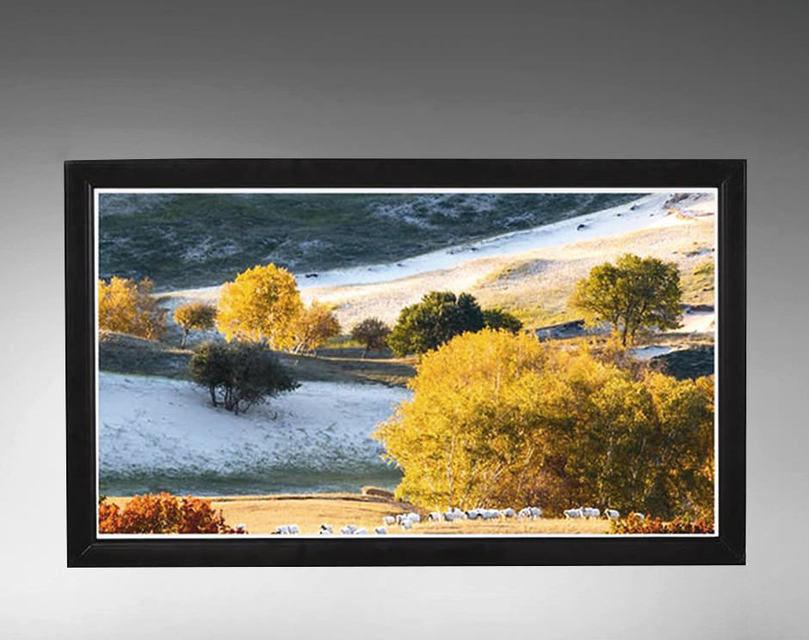 Проекционный экран ViewScreen Omega Velvet: гладкая поверхность без бликов