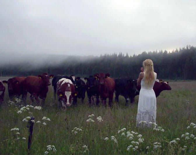 Сопрано-вокалистка исполнила древнее шведское пение-клич для привлечения стада коров [видео]