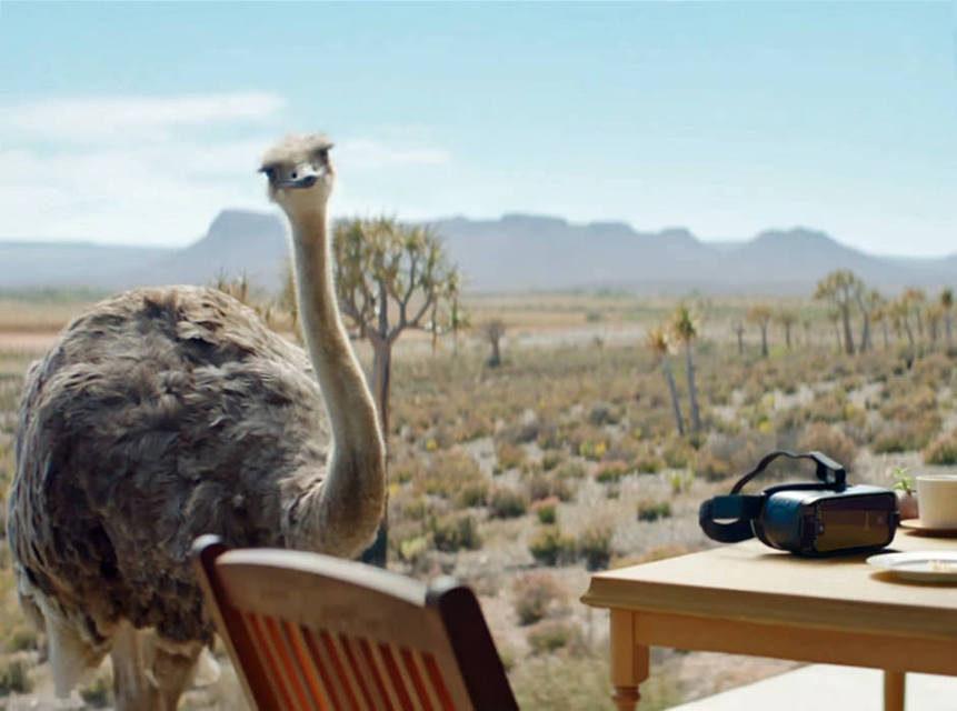 Samsung выпустила рекламу гарнитуры Gear VR со страусом в главной роли
