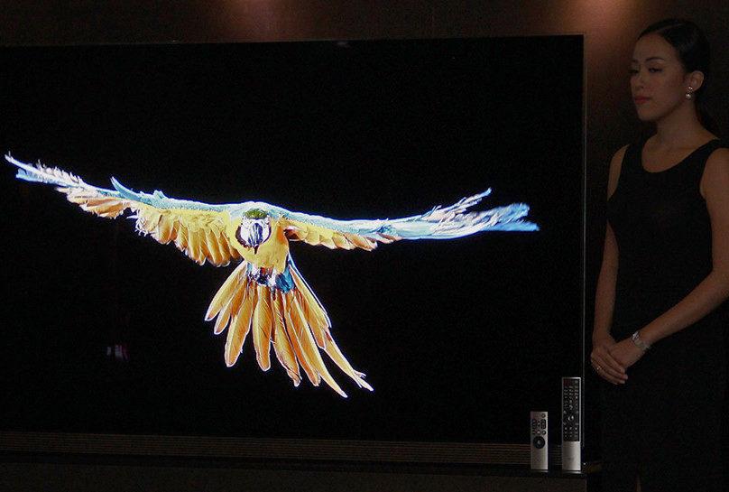 LG устранила проблему с завышенным уровнем черного в OLED-телевизорах 2017 года