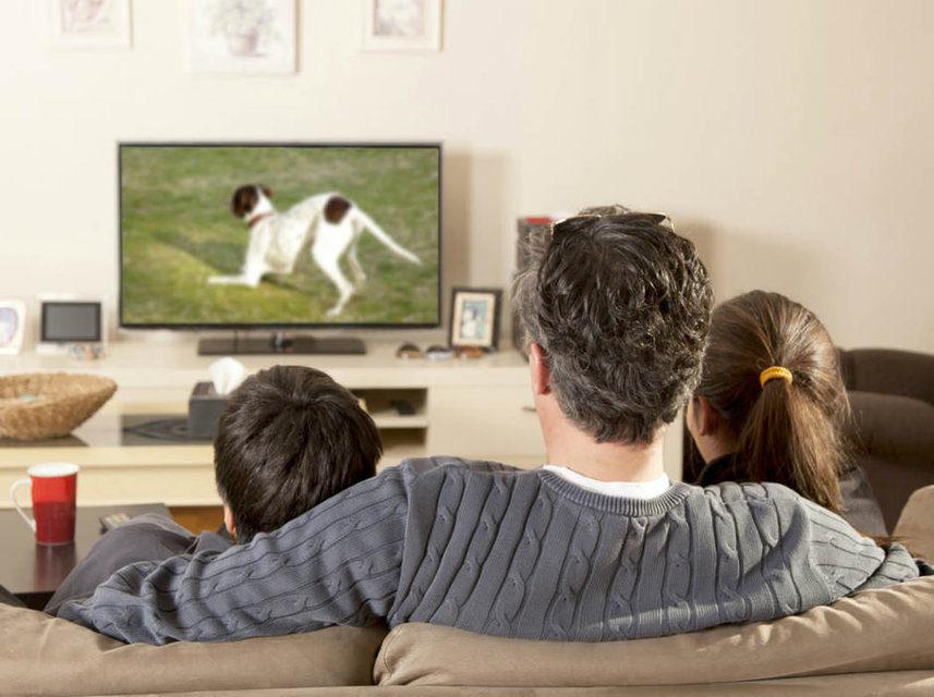 Опрос: большой экран стал основным фактором покупки современного 4K-телевизора среди жителей США