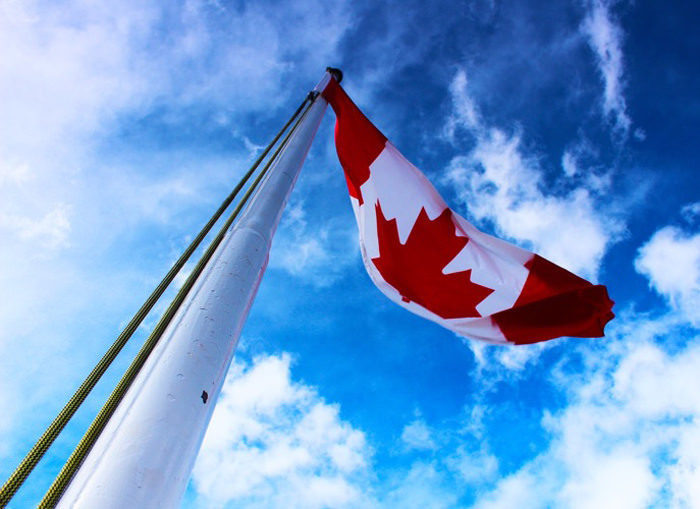 Статистика: продажи винила в Канаде за год выросли на две трети