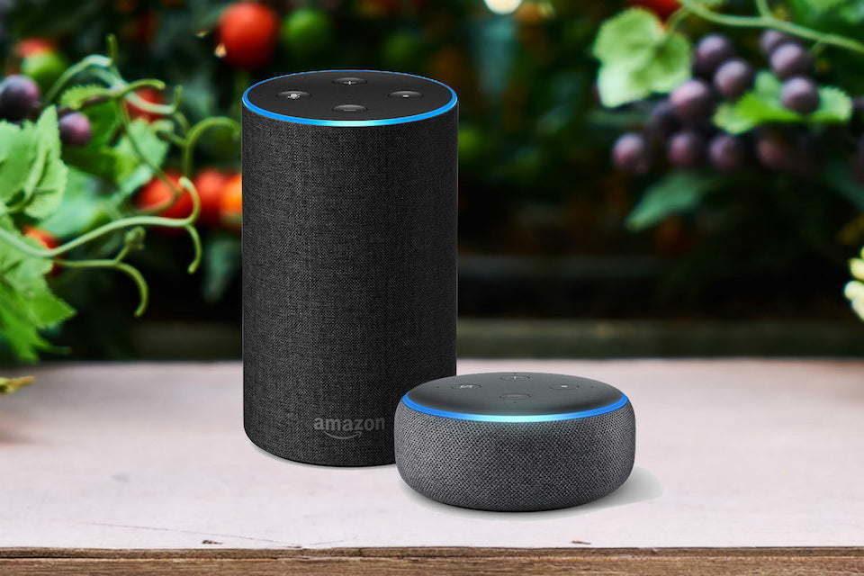 Бесплатный потоковый музыкальный сервис от Amazon запустят уже в ближайшие дни