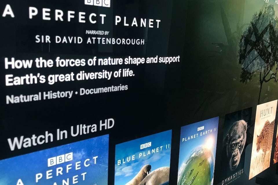 Сервис Discovery+ запустил раздел с фильмами BBC в качестве 4K