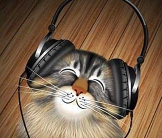 Ученые из США написали музыку для кошек