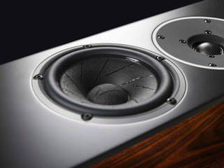 Акустику System Audio Pandion 30 оснастили драйверами со сверхлегкой мембраной
