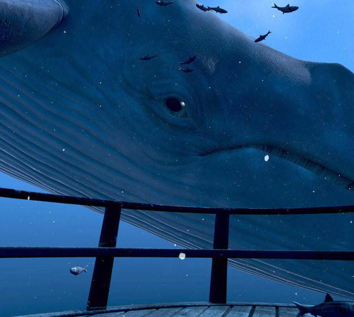 В очках виртуальной реальности HTC Vive можно «поплавать» с синим китом