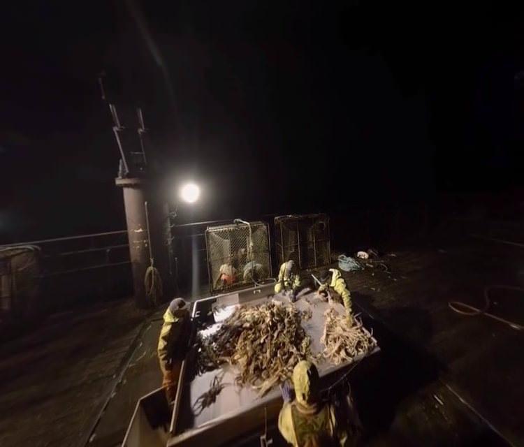 Канал Discovery снял VR-видео от лица пойманного рыбаками краба
